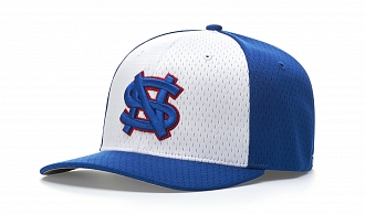 495 White and Royal Blue Alternate
